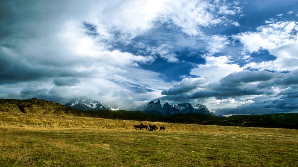 Patagonie-2