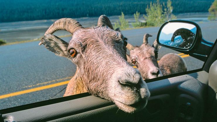 Nejhezčí silnice Kanady