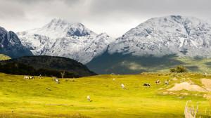 Ushuaia/Argentina